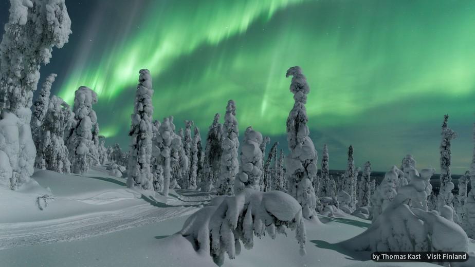 FINLANDIA: ROVANIEMI, EVASIONE D'INVERNO - SPECIALE CAPODANNO