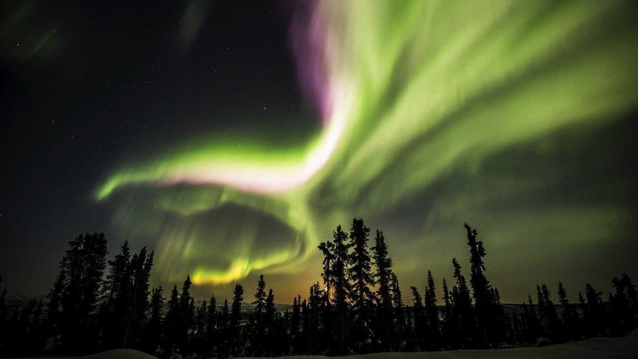 CANADA, YUKON: A CACCIA DELL'AURORA BOREALE!